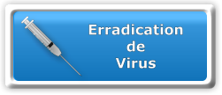 Erradication de virus à domicile Click and Go ! informatique Paris